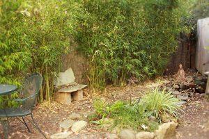zen garden 8596